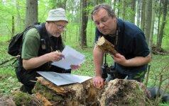 Vertingiausiame Lietuvos miške - gamtininkų grumtynės