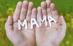 L. Klimka paaiškino, kodėl švenčiamos 33 Motinos dienos
