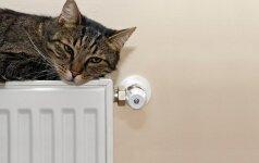 Kaip už šildymo paslaugas daugiabučiuose mokėti trečdaliu mažiau?