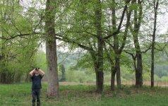 Kitoks maratonas: susipažink su Vingio parko augalais ir gyvūnais