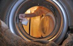 Gudrybė, kaip lengvai išvalyti pelėsius iš skalbimo mašinos