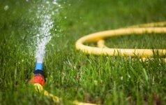 Kaip ir kada geriausia laistyti veją?
