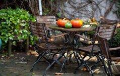 Kaip apsaugoti lauko baldus ir paruošti juos kitam sezonui?