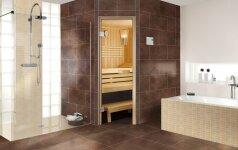 Ar įmanoma vonios kambaryje integruoti pirtį?