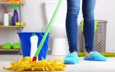 Pavasarinis namų tvarkymas: kokias priemones renkasi lietuviai?
