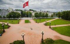 Archeologų radiniai Lukiškių aikštėje: kaulai, totorių gyvenimo pėdsakai