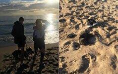 Kraupus įvykis paplūdimyje: moters akyse negyvai sudraskytas mažas šunelis