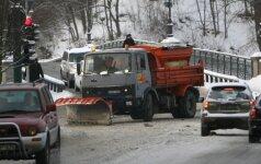 Dėl iškritusio sniego – chaosas: virto medžiai, tūkstančiai gyventojų – be elektros