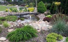 Skaitytojos patirtis: darni akmenų ir augalų kompozicija sode