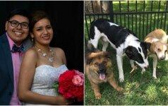 Unikali poros tradicija: per kiekvienas vestuvių metines priglaudžia naują šunį