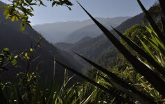 Kolumbijos sukilėliai sako paleisiantys į laisvę du olandų žurnalistus