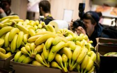 Lietuvos prekybos tinkluose – seniai regėtos bananų kainos