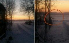 Nufotografavo vilką skerdiką: vaikšto aplink žmonių namus ieškodamas aukų