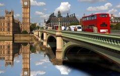 Londono gidas
