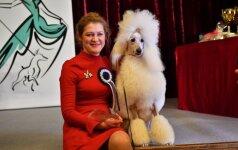 Išrinkti gražiausi Lietuvos šunys