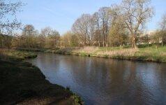 Beribis žmonių žiaurumas: prie šuns pririšo plytą ir įmetė į upę