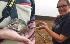 Prieš tyrėjų akis įvyko stebuklas: prisikėlė 30 metų išnykusiu laikytas gyvūnas