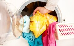 Kiek galima skalbyklėje laikyti drėgnus skalbinius ir ką daryti, jei jie suplėko