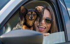 Bijantiems didelių išlaidų už savo gyvūnus – žinia iš Seimo