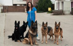 Neįtikėtina pažintis su trijų vaikų mama Živile, kurios namuose – net 23 šunys