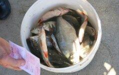 Ar gali žvejai mėgėjai patys įžuvinti vandens telkinius?