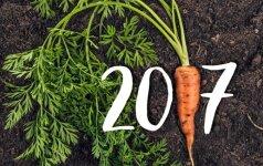 Kviečiame išbandyti naują sodininko kalendorių!