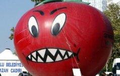 Ar turėtume bijoti GMO?