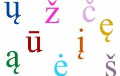 Renkamas gražiausias svetainės vardas su nosinėmis ir ilgosiomis raidėmis