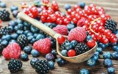 Vasariški uogų ruošimo receptai: šaldymas, uogienės ir šerbetas