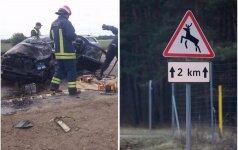Planuoja pokyčius ViaBaltica kelyje: skaudžių nelaimių turėtų mažėti