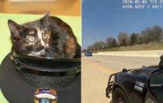 Nufilmuotas drąsus pareigūno poelgis: pažiūrėkite, kaip jis išgelbsti katytę