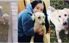 Sunku atsižiūrėti: aštuoniolikmetės išgelbėtas šuo iš valkatos tapo gražuoliu