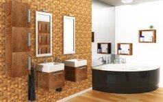 Vonios kambario baldai: į ką atkreipti dėmesį renkantis