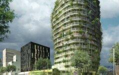 Eko-miestai. Nante medžiai auga ant dangoraižių