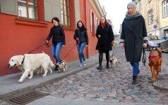 Ekskursija su šunimis