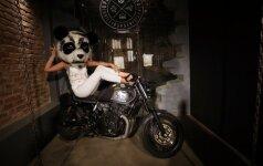 Baro O Panda Nekanda vakarėlis