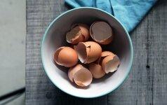 Kiaušinių lukštų nauda dirvožemiui: ar verta juos kaupti pavasariui?
