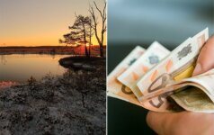 Aplinkos ministerija skaičiuos Lietuvos gamtos vertę eurais