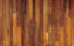 Mitai apie medines grindis