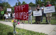 JAV prie Sinsinačio zoologijos sodo rengiamas budėjimas nušautai gorilai paminėti