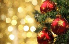 Trumpas Kalėdų eglutės pasirinkimo gidas