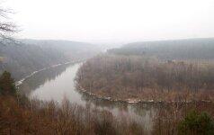 Paaiškėjo, kad seniausias Lietuvos miškas - Vingio parkas