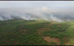 Ispanijos nacionaliniame parke įsiplieskė gaisras