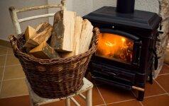 Kaip ir kodėl rinktis krosnelę namų šildymui?
