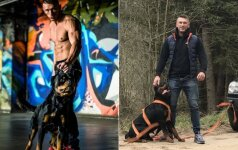 Vilniuje nunuodytas vienas garsiausių šunų Europoje: keturkojų nuodytojai darbuojasi be jokio atsako