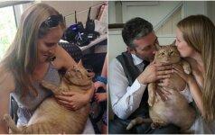 Originali vestuvinė fotosesija: jaunavedžiai rankose sūpavo savo storą katiną