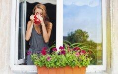 Gydytis nealinant organizmo padės ir populiari balkonuose auginama gėlė
