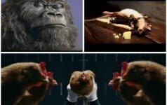 Reklamos su gyvūnais: kam juokinga, kam - graudu