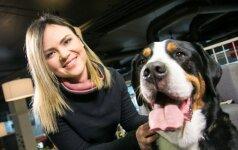 Specialistė patarė, kaip užimti šunį, kad namai neatrodytų lyg po karo
