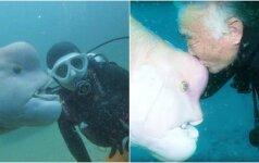 Neįprasta pažintis po vandeniu: šią žuvį naras vadina savo drauge